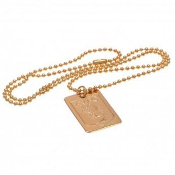 Aston Vila naszyjnik z zawieszką Gold Plated Dog Tag & Chain